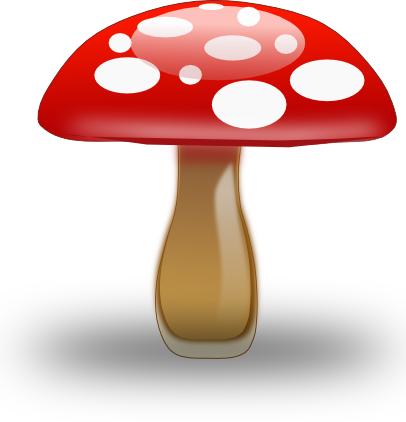 Danni di un fungo di medicina di unghia